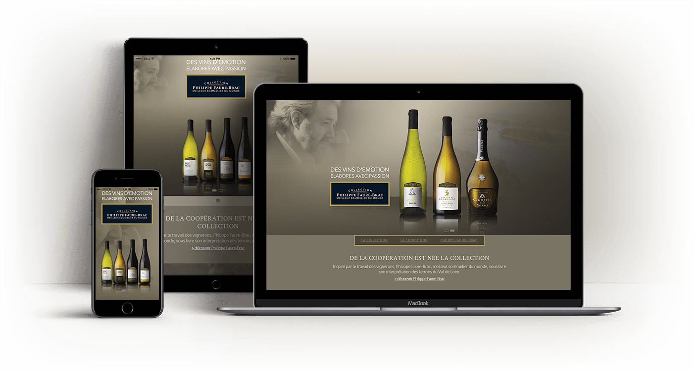 Montage du site internet Collection Philippe Faure-Brac - image integration-webdesign-ecrans-collection-philippe-faure-brac- on https://www.philippe-mignotte.fr